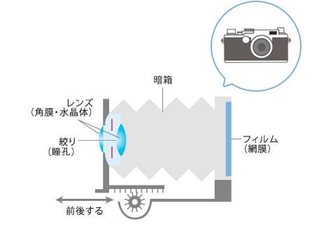 カメラの水平断面図